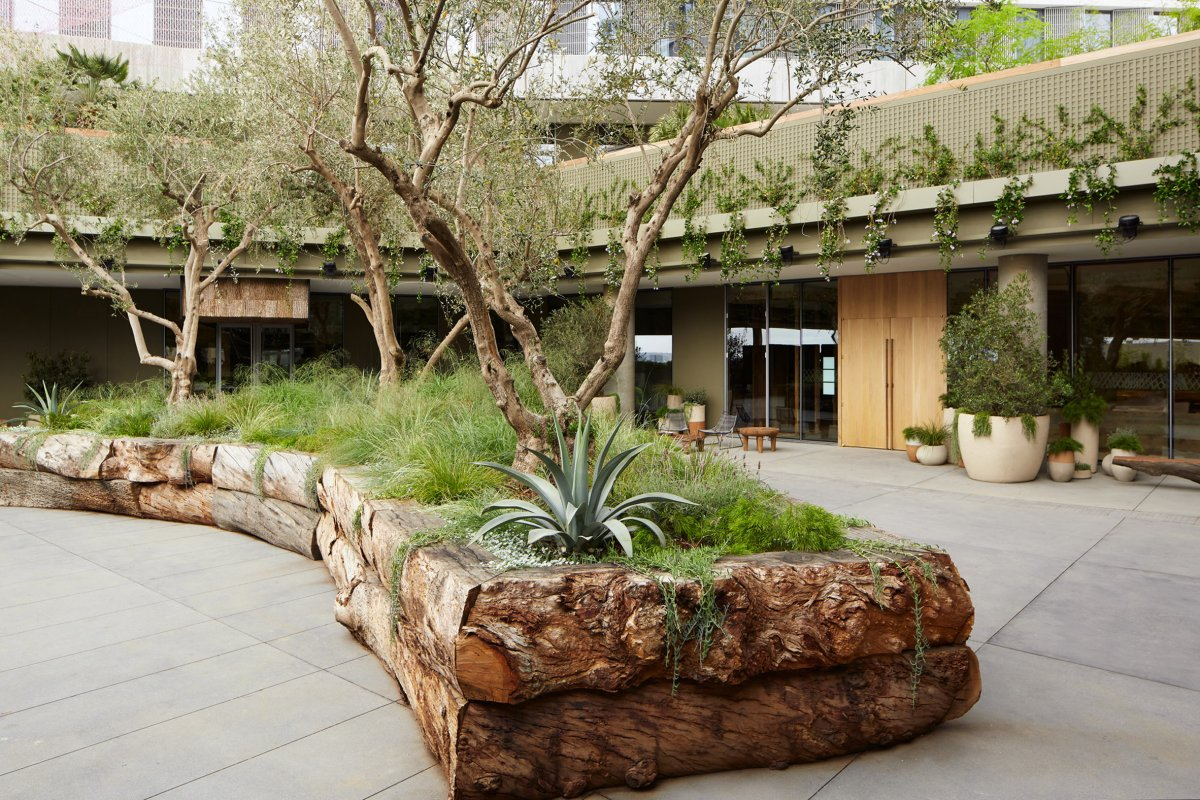 Los Angeles Natural Landscape Mountain Hotel designed by RCH Studios