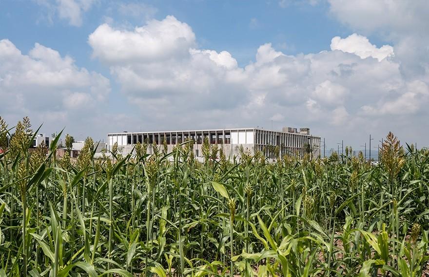Ignacio Urquiza | Escuela Bancaria y Comercial , 混凝土的花园式学校